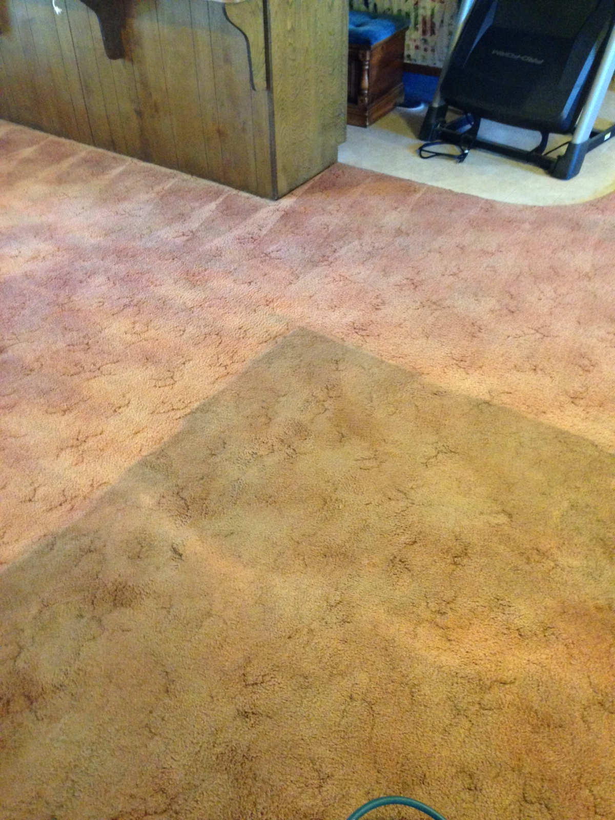How Often Should You Clean Your Carpets Carpet Cleaning