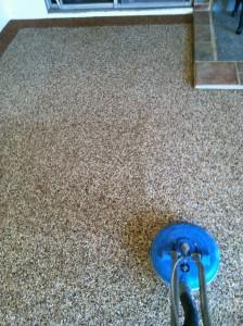 Pebbletec Flooring 1