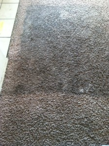 During Carpet Cleaning - Berbur Carpet